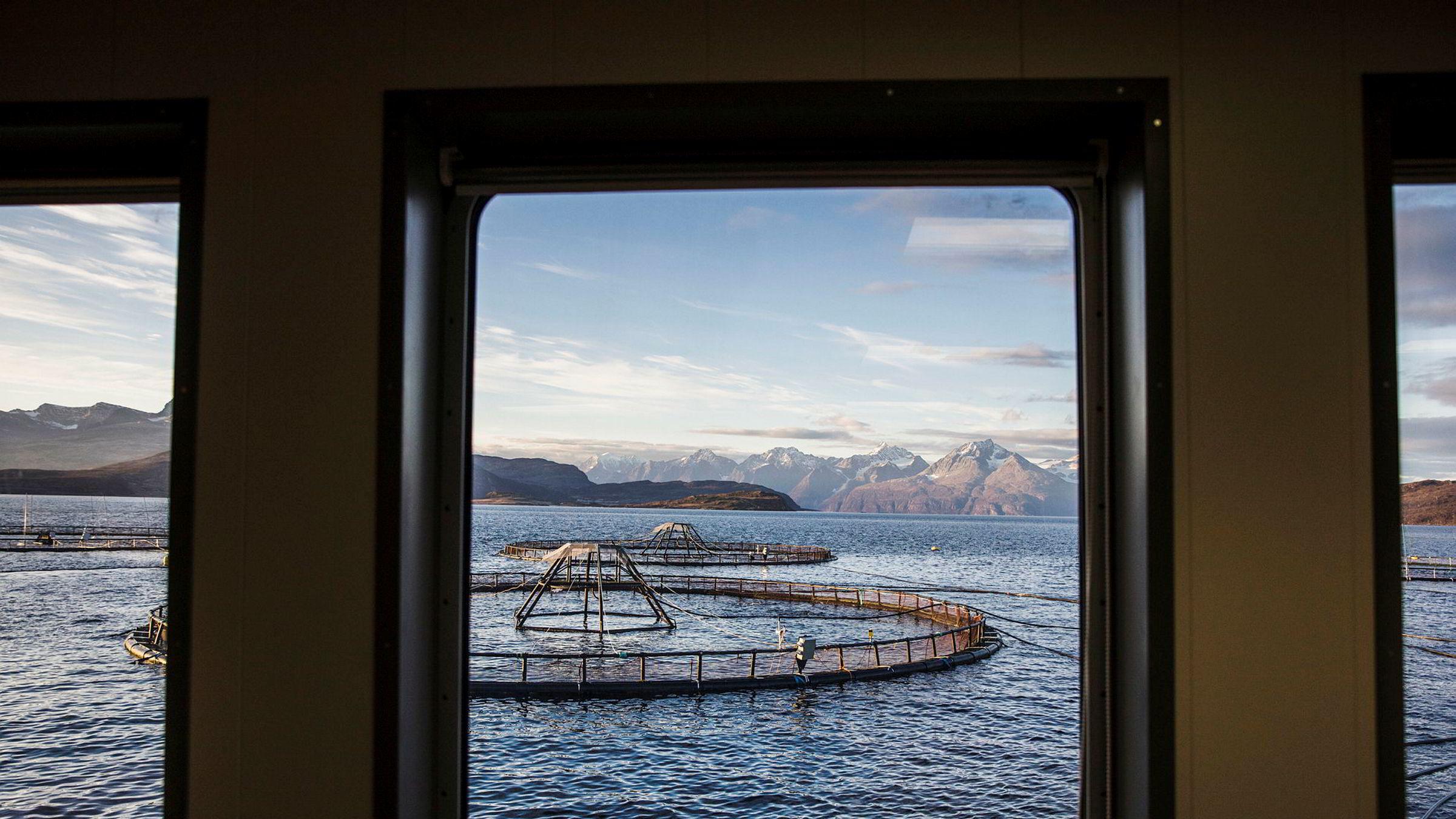 Havbruk kan seksdoble verdens matproduksjon og forsyne to tredjedeler av verdens befolkning med mat, ifølge en ny FN-rapport. Lerøy Aurora i Kågen ved Skjervøy i Nord-Troms.