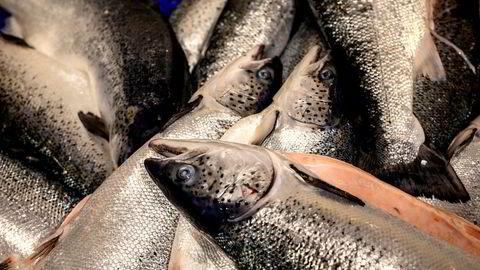 Hittil i år har Norge eksportert 2,2 millioner tonn sjømat til en verdi av 87 milliarder kroner. Eksportvolumet har falt med 4 prosent, og verdien har økt med 8 prosent, sammenlignet med samme periode i fjor.