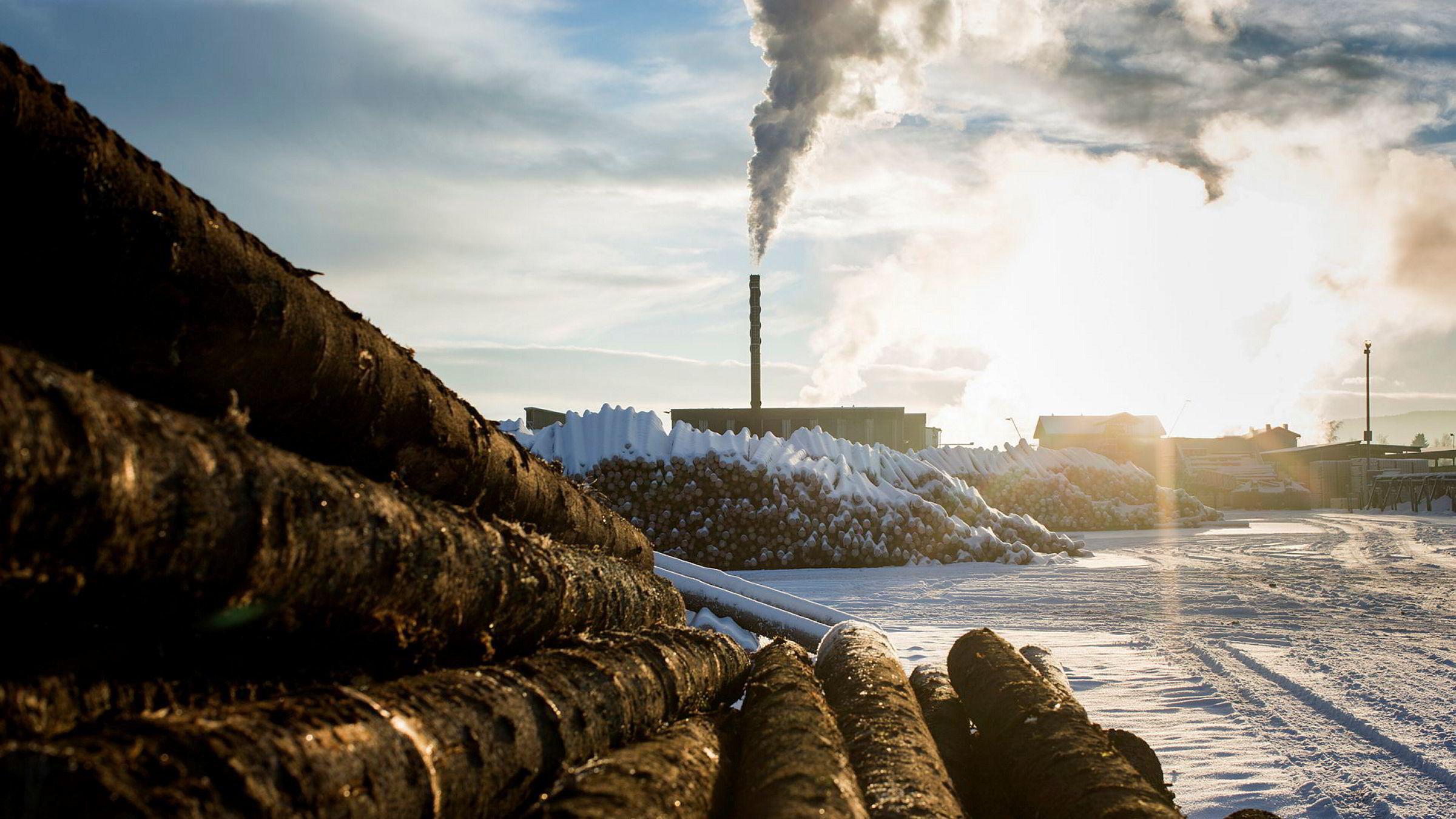 Å lage biodiesel av trevirke er svært energikrevende. Rundt halvparten av energiinnholdet i trevirket går med i prosessen, skriver SSB-forsker Bjart Holtsmark i kronikken.