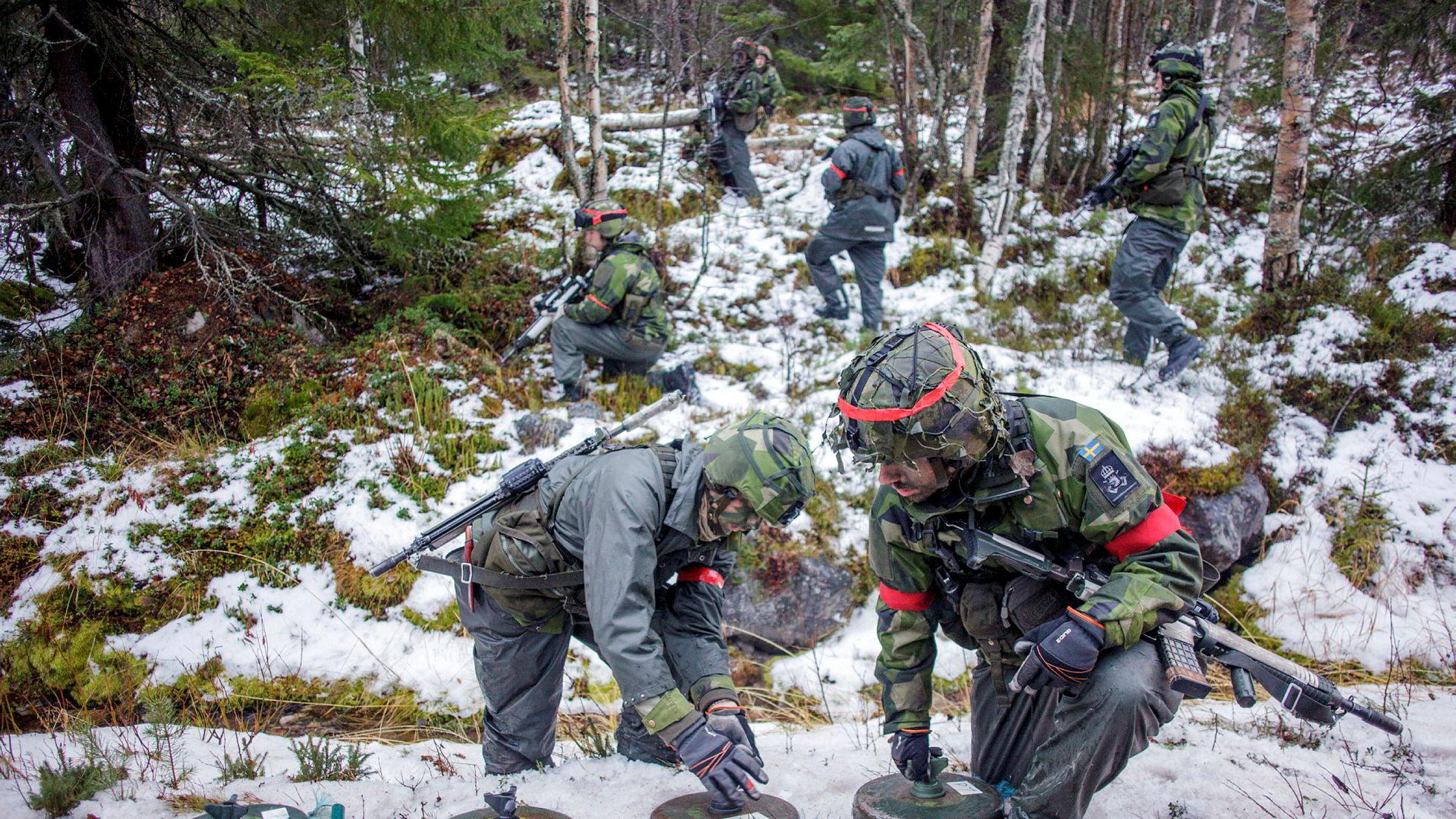 I skogen nord for Drevsjø og Engerdal patruljerte svenske soldater under Nato-øvelsen Trident Juncture i fjor høst.