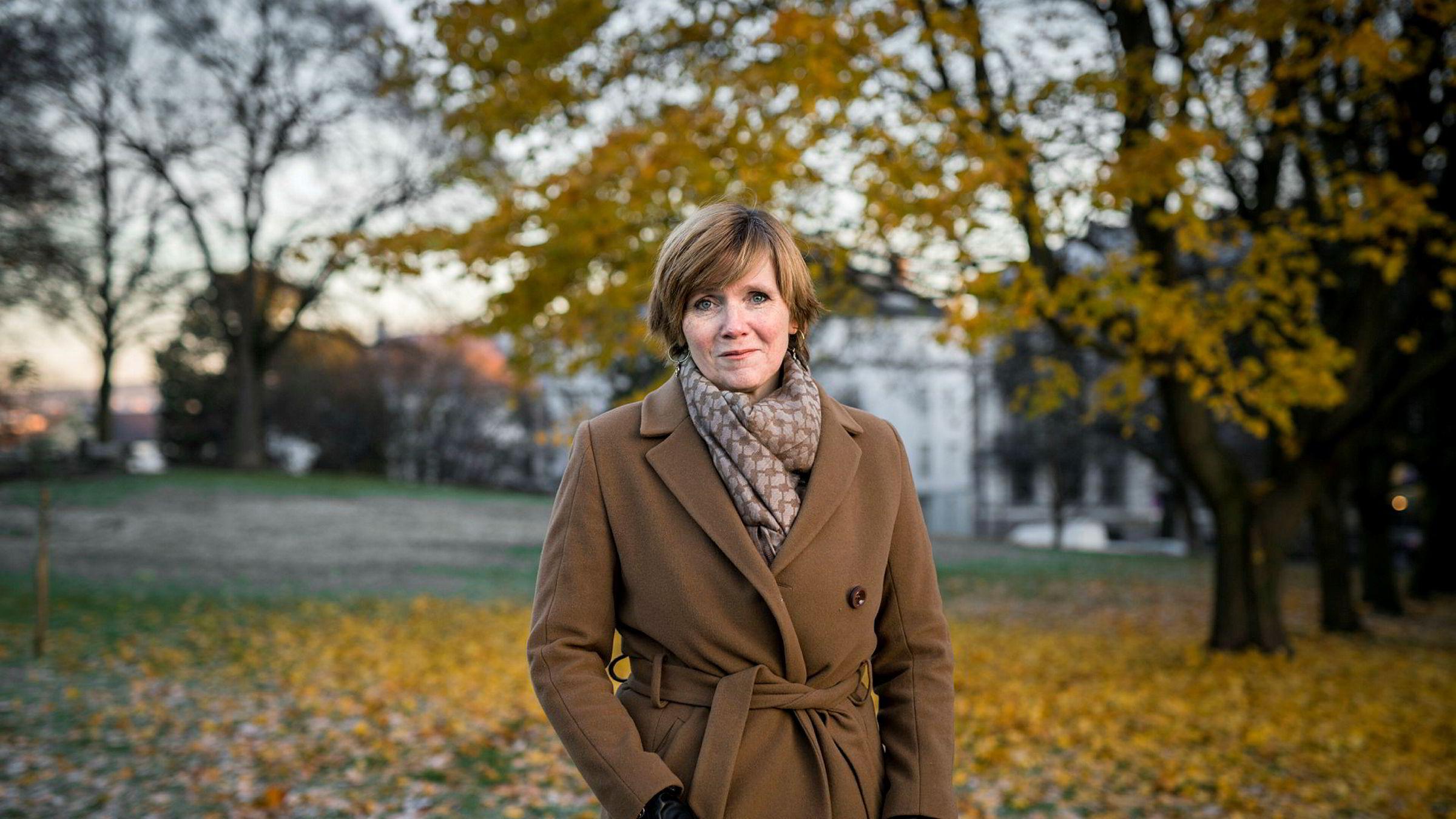 Christine Meyer har all mulig interesse av at etterlatt inntrykk er en etatsleder som ble utsatt for ufint politisk press fra en statsråd.