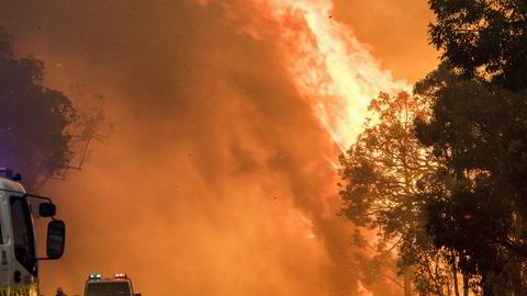Voldsomme skogbranner herjer i Australia.