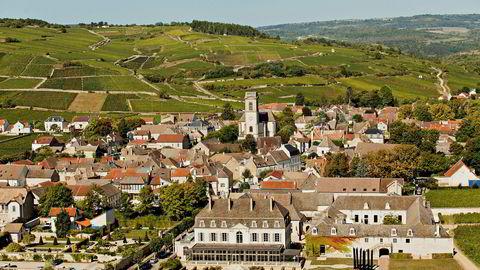 Noen av de beste rødvinsnyhetene kommer denne gangen fra landsbyen Pommard i Burgund.