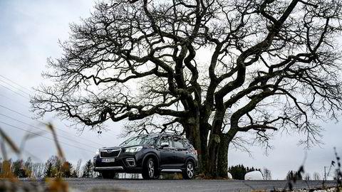 Subaru Forester er ny. Den ser bare ikke helt slik ut.