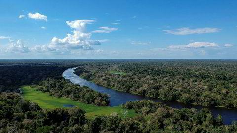 Brasils president Jair Bolsonaro har fjernet et forbud mot dyrking av sukkerrør i Amazonas. Her fra Miramar i delstaten Amazonas.