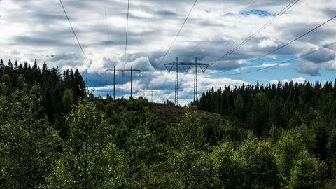 Lokale kraftselskap må altså tilrettelegge for nye aktører i kraftsystemet, skriver artikkelforfatterne.