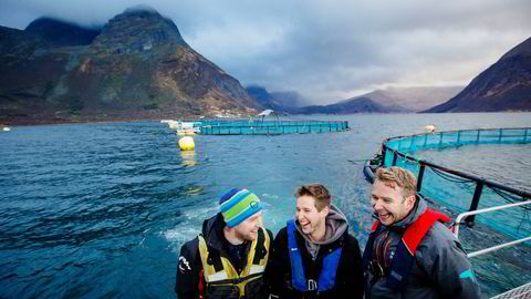 Brødrene Håvard Olsen og Gjermund Olsen, sammen med svoger Alf Gøran Knutsen, er trekløveret som styrer Kvarøy Fiskeoppdrett på Helgeland.