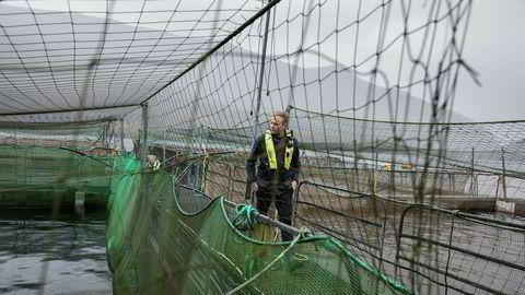 Sondre Eide skriver i et av ukens debattinnlegg om hvorfor miljøproblemene i oppdrett neppe vil løses om han sleper Eide Fjordbruk til havs eller flytter det opp på land. Foto: Eivind Senneset
