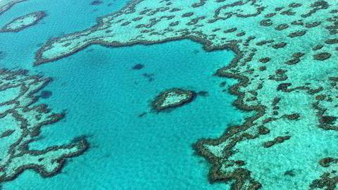 Verdens største korallrev ikke blir ført opp på FN-organisasjonen UNESCOs liste over truede verdensarvsteder.