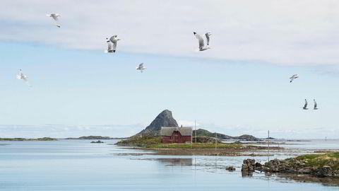 Vi må vise at vi er klare til å la jordens tåleevne være en ramme for politikken, og at vi kan ta tøffe valg. Ett eksempel er spørsmålet om oljeutvinning i Lofoten, Vesterålen og Senja. Her er Røst i Lofoten i Nordland.