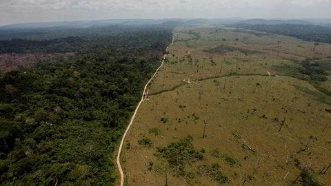 I et lovforslag fremmet 13. juli, foreslo Brasils miljødepartement å åpne for at store deler av Jamanxim-skogen i Amazonas kan bli avskoget.