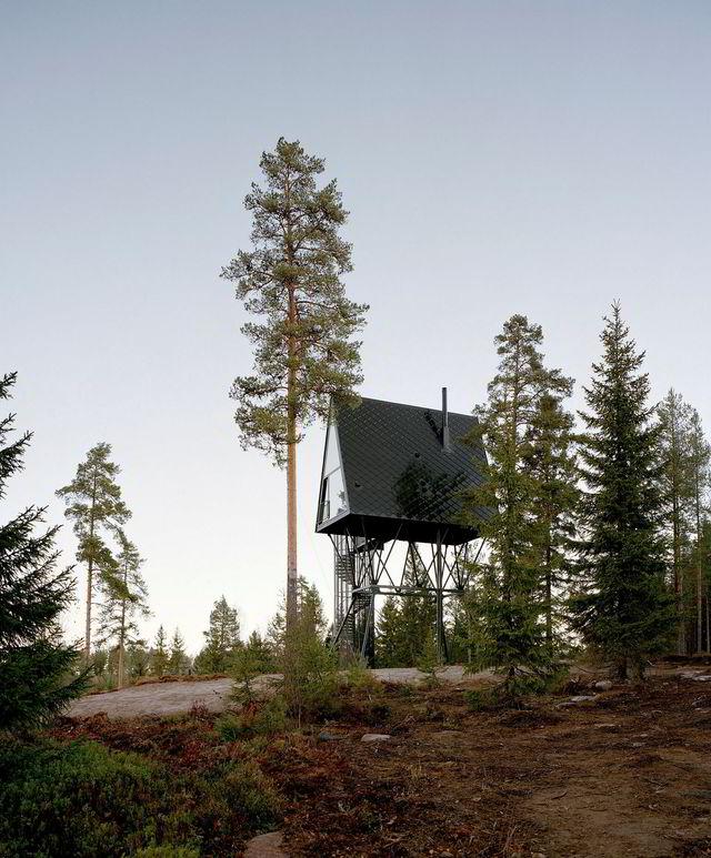 Pan tretopphytter på Finnskogen tar arkitekturen opp i