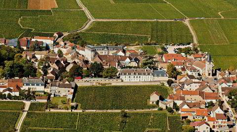 Rundt landsbyen Vosne-Romanée i Burgund lages verdens dyreste viner basert på druen pinot noir.