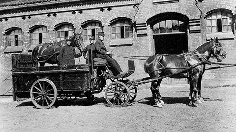 Syk hest. Politiet i Kristiania hadde en egen transportvogn for syke hester. Fotografen er ikke kjent, bildet er tatt rundt 1910.