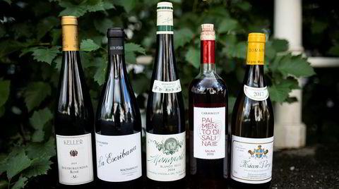 Et knippe av vinene det er verdt å sikre seg fra Polets nyhetsslipp i juli.