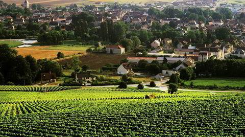 Landsbyen Chablis bader i vinmarker.
