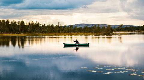 Harrypaddel. Fisken spretter, men riksgrensen er usynlig. Det er best å sitte stille i båten og nyte ensomheten i Femundsmarka nasjonalpark.