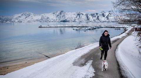 Elena Bejenaru lufter hunden sin mens hun venter på at fiskerne skal komme inn med fangsten til Myre fiskemottak.