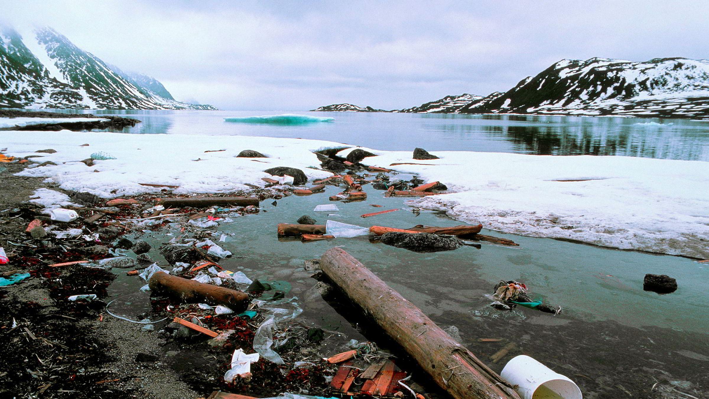 Jonas Gahr Støre vil ha en internasjonal dugnad for å få bukt med forsøplingen av havet, og en nasjonal dugnad for å kartlegge polhavet. Konsekvensene av ikke å gjøre noe, kan bli som dette der plast og nett fra det nordlige Atlanterhavet har endt opp sammen med tømmerstokker fra Sibiria på en strand på Danskøya på Svalbard.