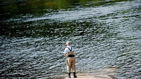 Rømt oppdrettslaks som gyter med villaks i elvene fører til færre laks og svekkede bestander, viser ny rapport. Foto: Kjell Inge Søreide