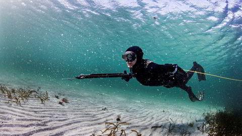 Fordelen med flaskeløs fridykking når man jakter under vann, er at det ikke er noen luftbobler som skremmer fisken. Christine Bendiksen (47), glir fremover over sandbunnen.