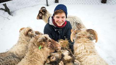 Bæææærekraftig. På Kampen barnebondegård kappes en gjeng spælsauer om høyet forfatter Anna Blix har i hånden. – Sauekjøtt er en klimaversting, medgir Blix, omtrent på linje med biff. – Men den gir så mye annet! Vi får natur- og artsmangfold, vi får kjøtt og ull på samme areal. Og arbeidsplasser, ramser hun opp