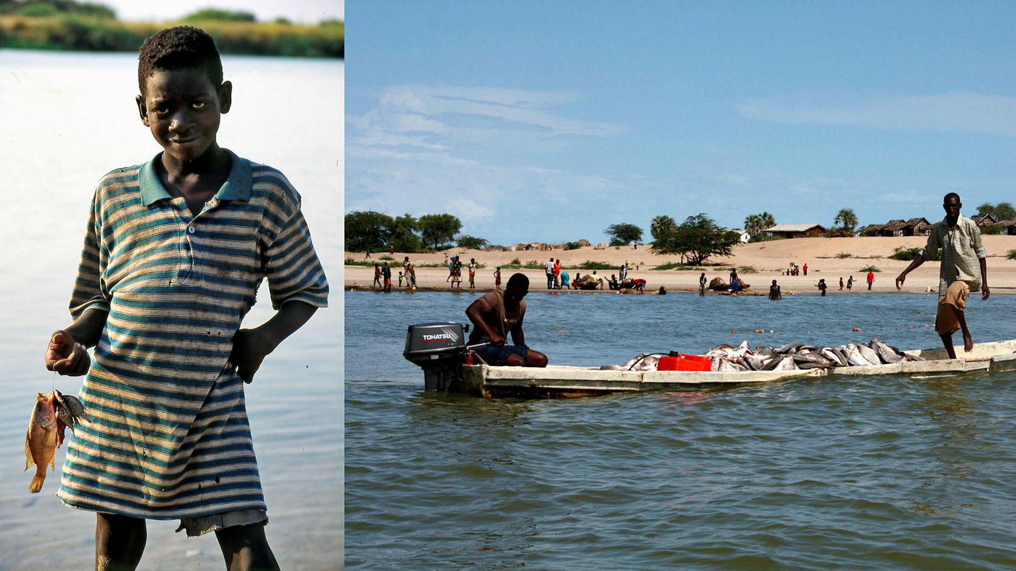 Professor Jeppe Kolding og forskningssjef Tor Næsje mener spredningen av arten niltilapia til stadig flere elver og innsjøer i Afrika, med betydelig norsk bistand, er oppskriften på en miljøkatastrofe. Ung fisker (til venstre) i Øvre Zambezi.