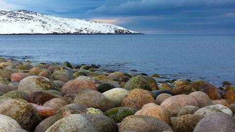 De historisk sett isfrie og fiskerike områdene sør i Barentshavet er godt forstått og forvaltet. Men hva er tilstanden og tålegrensene for det havet som åpner opp med isens tilbaketrekning? Spør forfatteren.