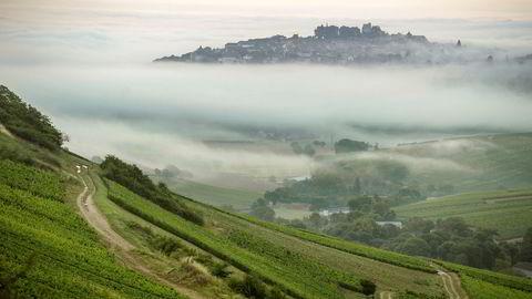 Utsikten fra bratte Monts Damnés mot Sancerre.