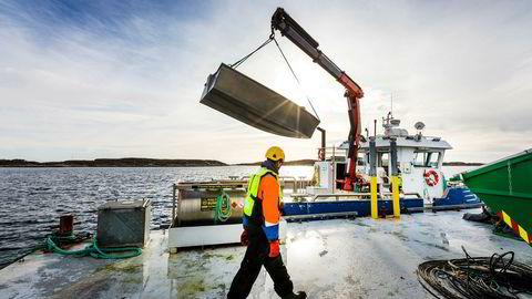 I et kanadisk søksmål mot norske lakseoppdrettere kreves det 500 millioner kanadiske dollar, tilsvarende nesten 3,4 milliarder norske kroner etter dagens kurs.