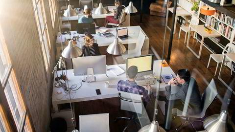 Av de unge bedrifter er både de små og de større netto positivt jobbskapende. Av de eldre bedrifter er det bare de store som er netto positivt jobbskapende, skriver artikkelforfatterne.