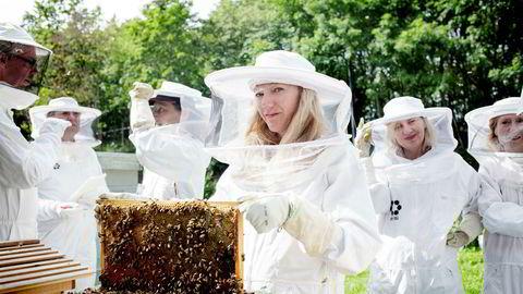 Forfatter Maja Lunde sammen med fransk pressekorps som kommer til Norge for å intervjue henne, og bli med henne og se på bier på Bygdøy.