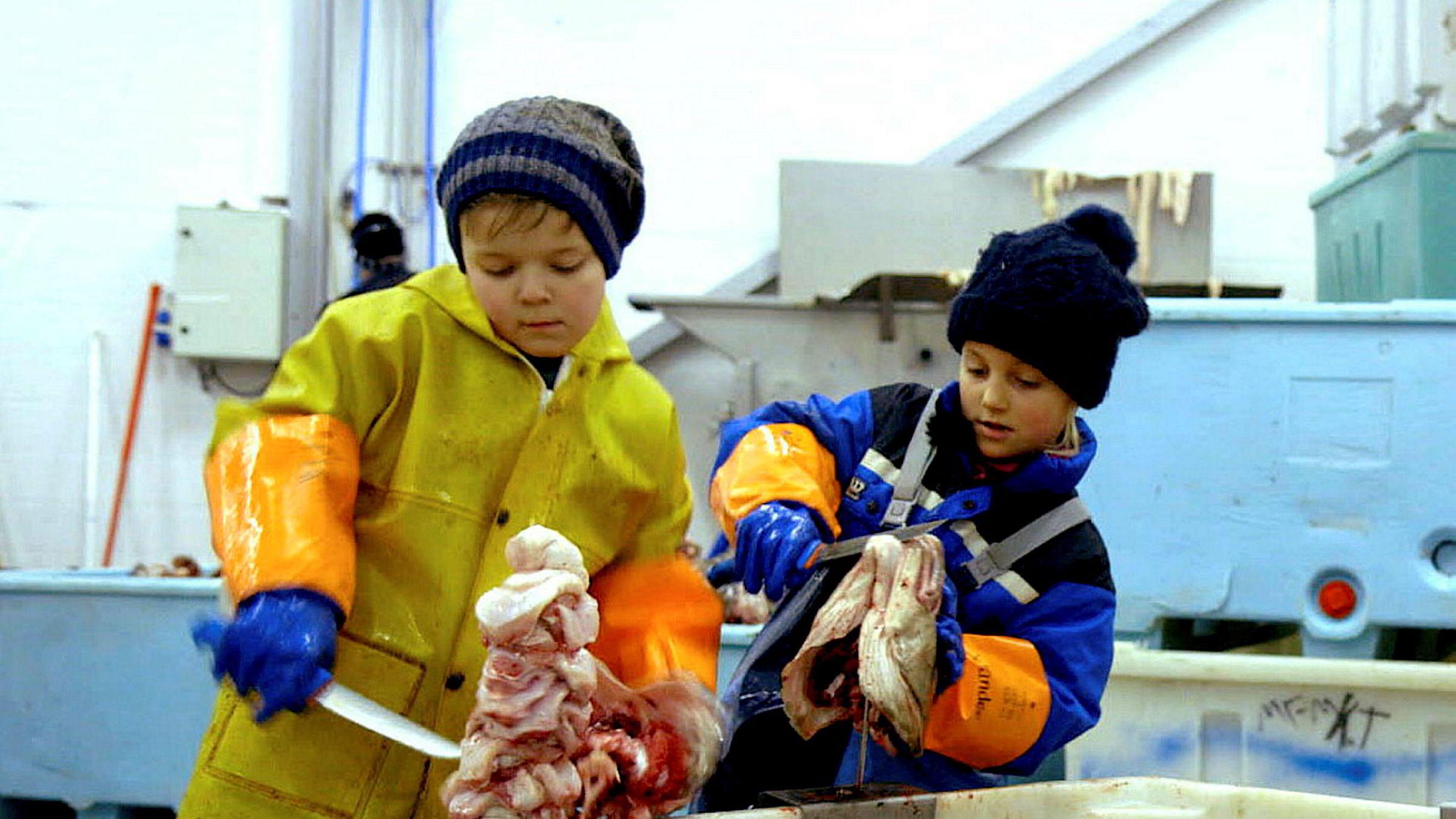 Byjenta Ylva møter på fiskemottaket i Øksnes i Vesterålen sammen med kameraten Tobias og får helt andre opplevelser enn dem hun er vant til.