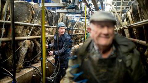 Maurice Smiddy og faren Joe har 180 kuer. Nå skal de levere melk til den norske osten Jarlsberg. Selv om det er overflod av melk i Norge, flagger Tine ut et melkevolum tilsvarende 500 norske gårder.