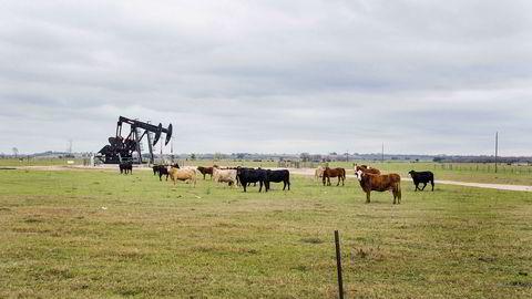 Statoils milliardnedskrivninger de siste årene har vekket bekymring hos Riksrevisjonen og Olje- og energidepartementet. Her fra skiferformasjonen Eagle Ford i Texas der Statoil er operatør.
