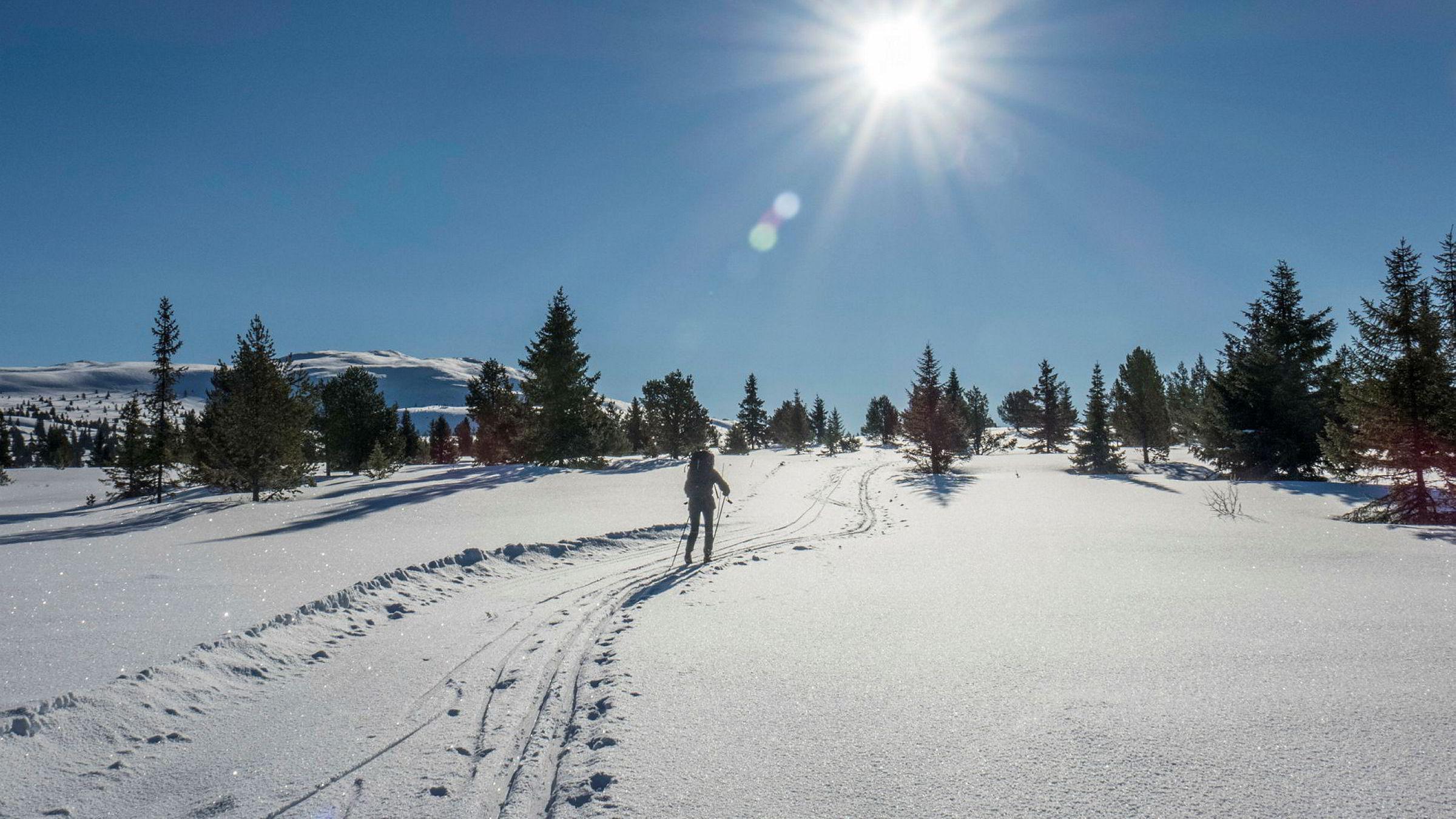 Regjeringen åpner for nye endringer i motorferdselsloven. Det får paraplyorganisasjonen Norsk friluftsliv til å reagere.