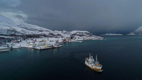 Fiskebåten «Mjosund» har levert skrei hos Lerøy Seafood i fiskeværet Tromvik utenfor Tromsø.