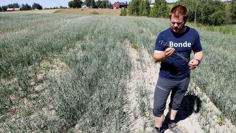 Bonde Lars Halvor Stokstad på Kløfta driver med korn, melk og kjøtt. I år blir kornavlingen under det halve av normalen. En ny rapport viser hvilken betydning en halv grad har for global matsikkerhet.