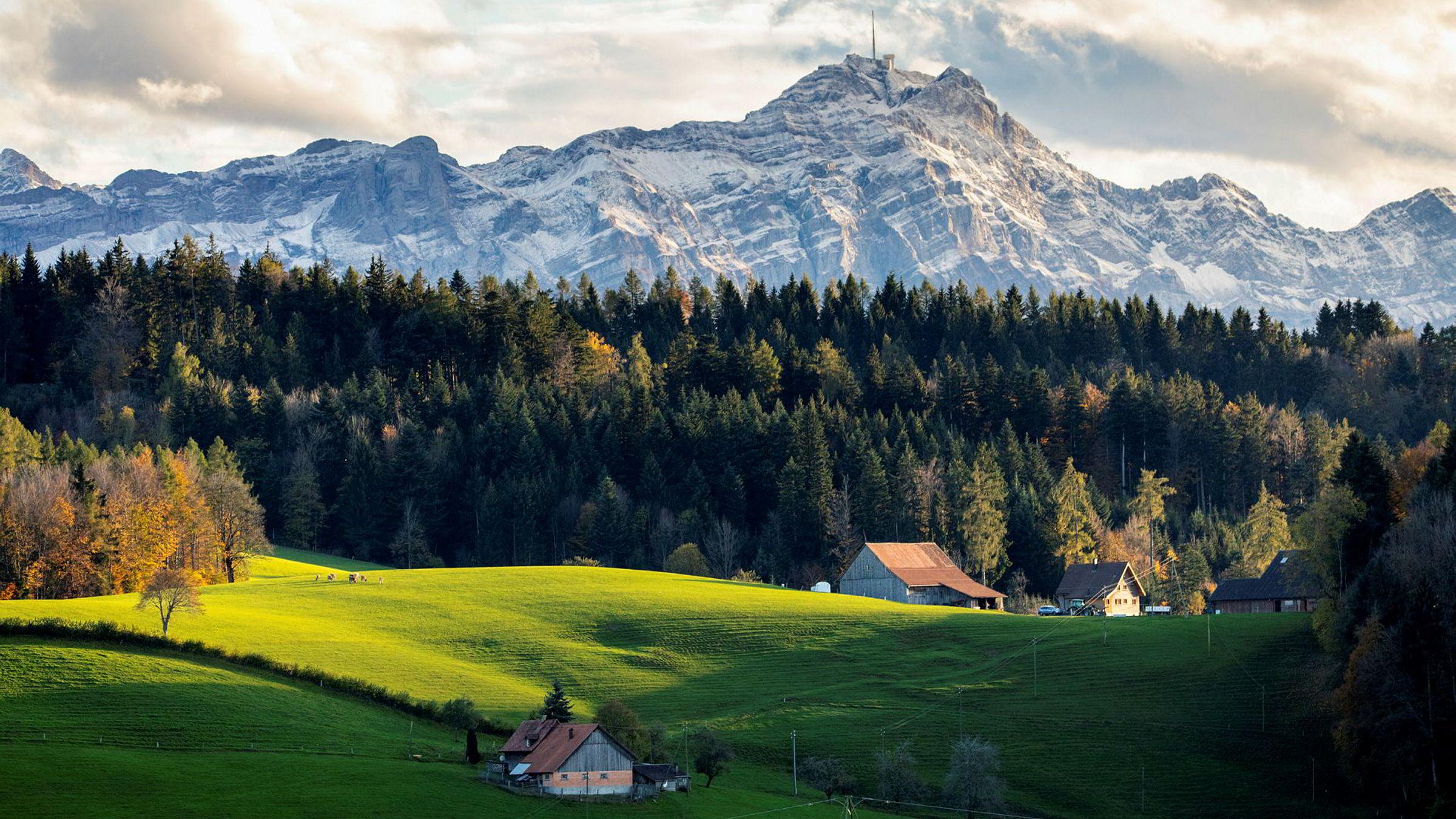 Den lille byen og finanssenteret St. Gallen ved Bodensjøen i Sveits ligger naturskjønt til, og har beitende kyr inne i byen. University of St. Gallen har vært et av de mest prestisjefylte stedene for norske studenter innen økonomi og administrasjon helt siden 1947.