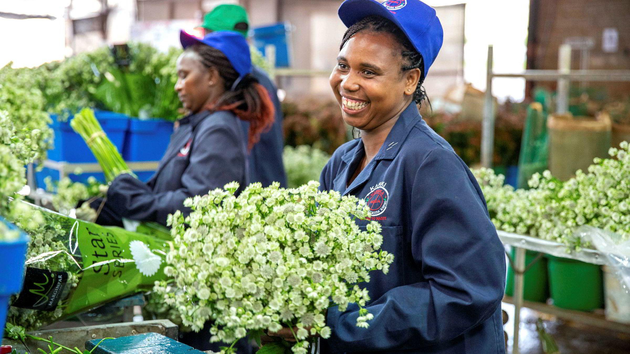 Den østafrikanske blomsterprodusenten Marginpar at de mistet så godt som alle inntekter da blomsterbørsen i Amsterdam lukket dørene i vår. Selskapet har fått nødkapital fra Norfund.