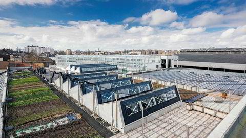 Energibehovet reduseres ved å utnytte varmen fra bygget under dersom veksthuset legges til et tak. Her fra BIGH i Brussel.
