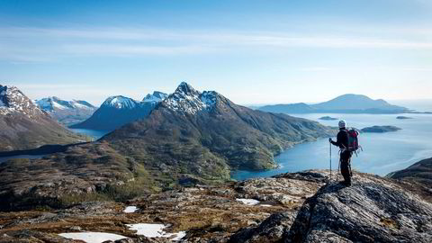 Mann på topptur til Brenneshovudet på Helgelandskysten. Med Okstinden i bakgrunnen.