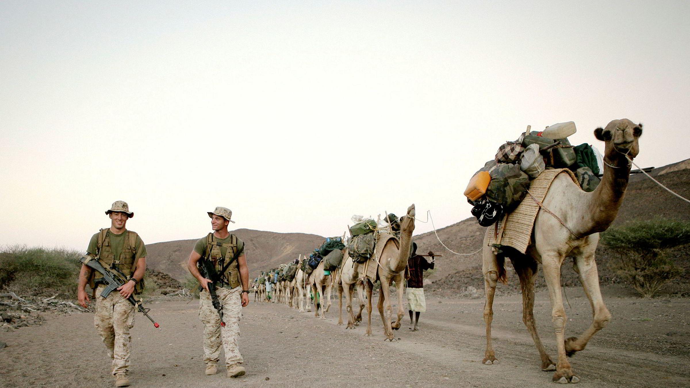 Noen av Djiboutis rundt 20.000 kameler bidrar til å dra lasset for stormaktene som har militærbase der. Her fra en amerikanskmilitærøvelse i ørkenlandet.