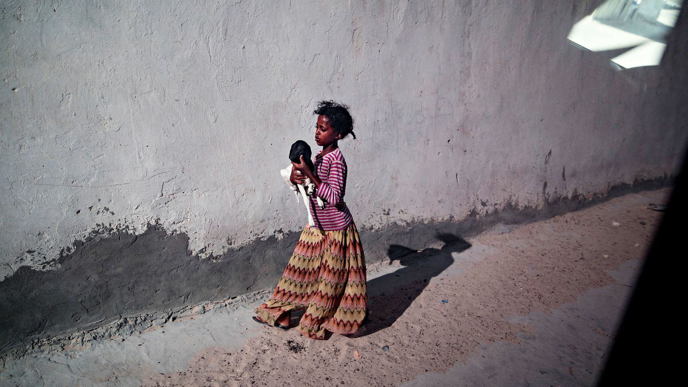 Somalia er nå inne i sitt tredje år med tørke. 80 prosent av husdyrene er døde, millioner av mennesker er rammet, skriver forfatteren.