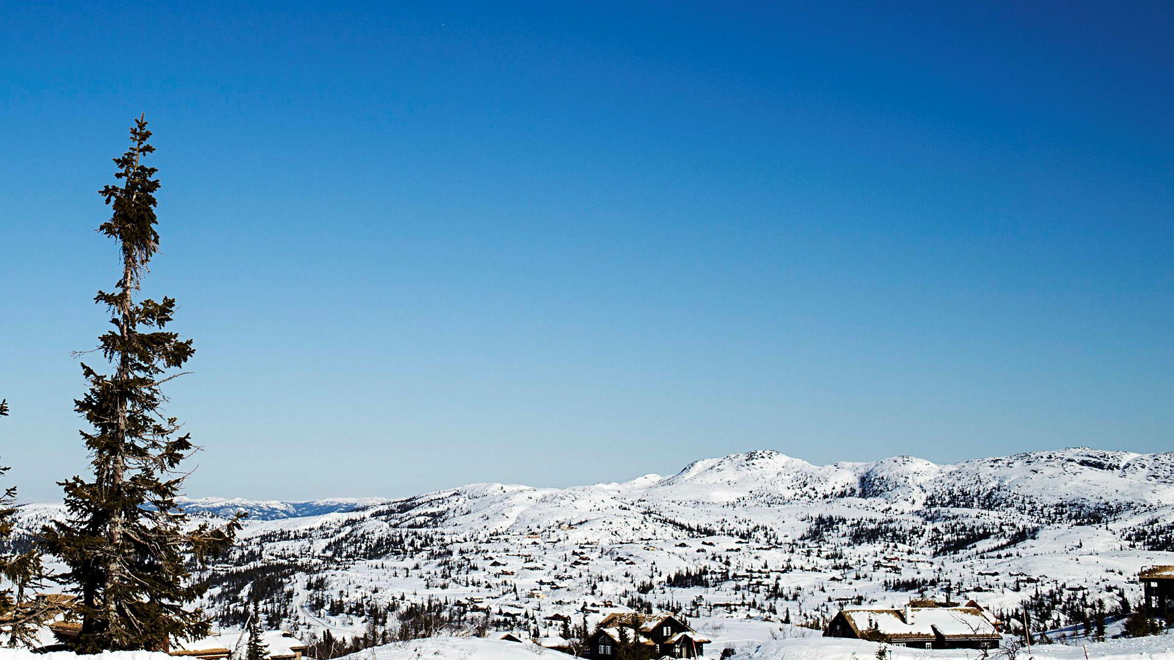 Flå kommune - med hyttefeltet Høgevarde -hadde de høyeste hytteprisene siste 12 måneder.