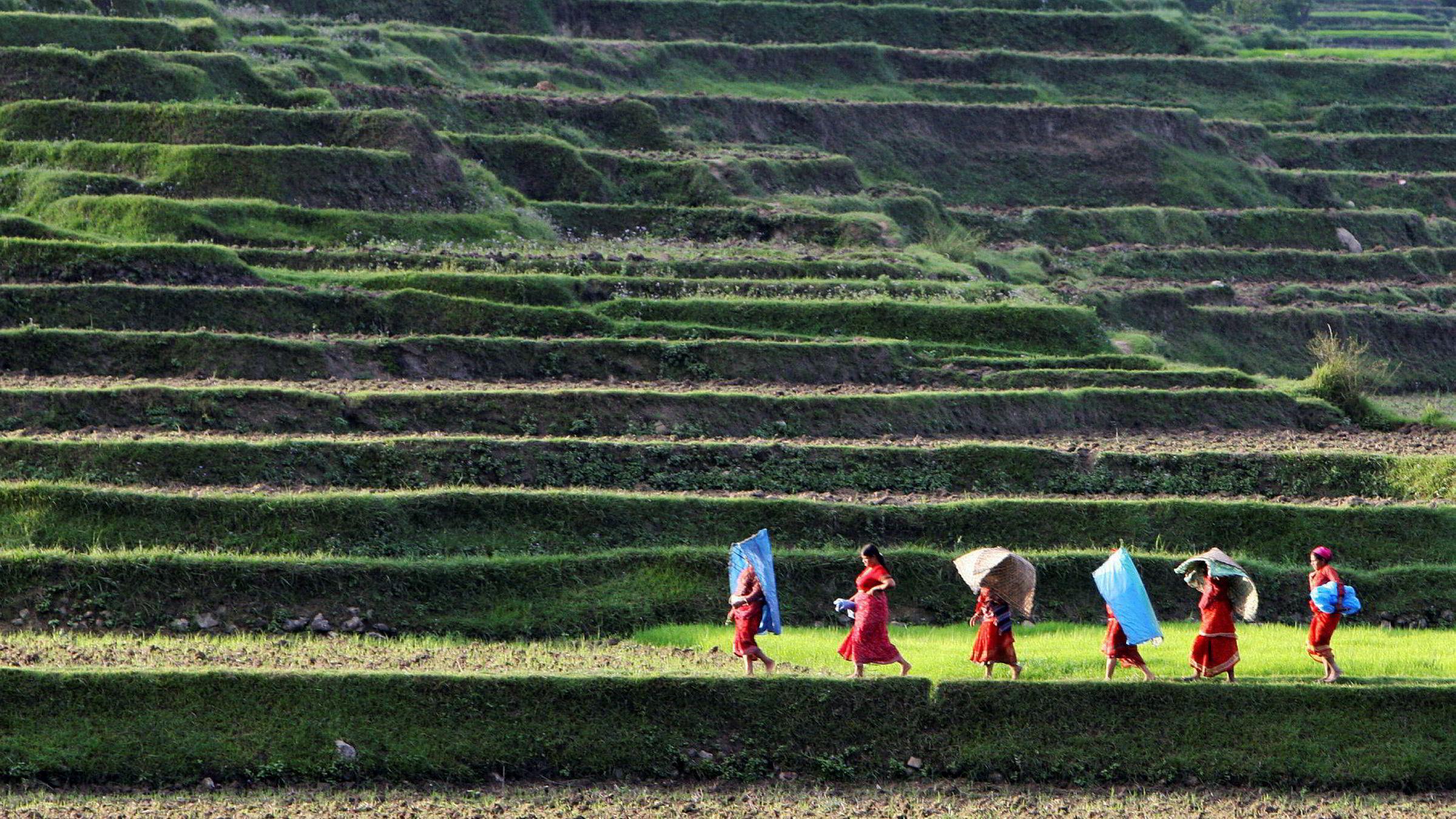 Å bekjempe fattigdom er hovedmålet for norsk utviklingspolitikk, og det er mange veier til dette målet. Ansvarlige investeringer fra næringslivet er blant annet viktig for å utvikle middelklasser og bidra til en formalisering av økonomien, noe som over tid også gagner de aller fattigste, skriver artikkelforfatteren. Her fra Nepal, ett av Norges satsingland for bistand.