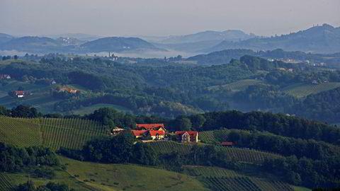Vid verden. Sattlerhofs vinmarker ligger opp mot 550 meter over havet, noe som gjør den svært egnet til å lage friske og ferske hvitviner.