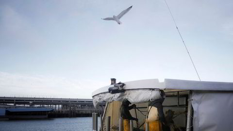 Fiskere på den franske båten Jeremy-Florent II var tirsdag 10. desember ute på havet. Den nye brexitavtalen reduserer EUs fiskekvote med 25 prosent.