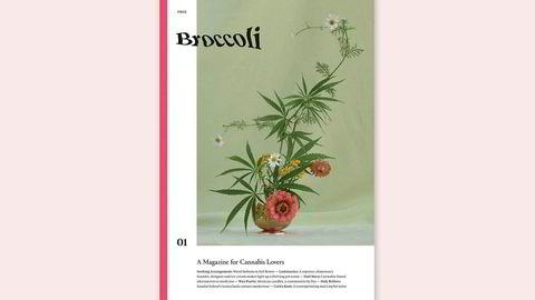 Inn i hampen. – Å lage et gratismagasin er viktig for vårt prosjekt, fordi vi mener at cannabis og cannabismedier burde være tilgjengelige, sier redaktør Anja Charbonneau, om Broccoli – et magasin om cannabis for kvinner.