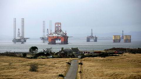 Seadrill Limited bekrefter at datterselskapet Seadrill Serviços de Petroleo ble overlevert en ransakelsesordre av brasiliansk politi i forbindelse med korrupsjonsetterforskning. Her The West Phoenix  i opplag sammen med flere andre plattformer i Port of Cromarty Firth, England i 2016.